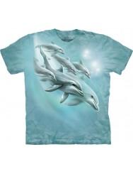 ДельфинЯшный дайвинг!