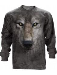 Волчий взгляд завораживает...