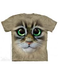 Большие и добрые глаза котёнка